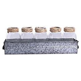 Bee & Willow™ Home Galvanized Metal Mason Jar Set (Set of 5)