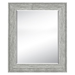 Bee & Willow™ Home Rectangular Wall Mirror in Grey/Silver