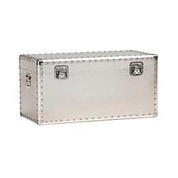 Francis Metal Storage Trunk in Silver