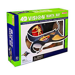 4D Vision Manta Ray Anatomy Model