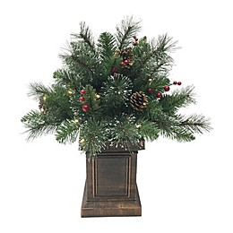2-Foot Traditional Frosted Berry Pine Pre-Lit Potted Artificial Christmas Tree in Green