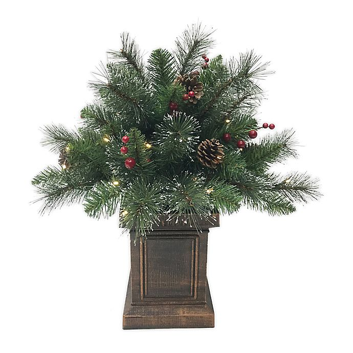 Alternate image 1 for 2-Foot Traditional Frosted Berry Pine Pre-Lit Potted Artificial Christmas Tree in Green