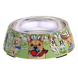 Certified International® Dog Park 12 oz. 2-Piece Feeding Bowl Set in Green