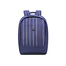 DELSEY PARIS Securban 15.6-Inch Laptop Backpack