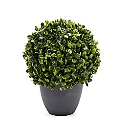 Bee & Willow™ Home 8.6-Inch Boxwood Artificial Topiary in Cement Pot