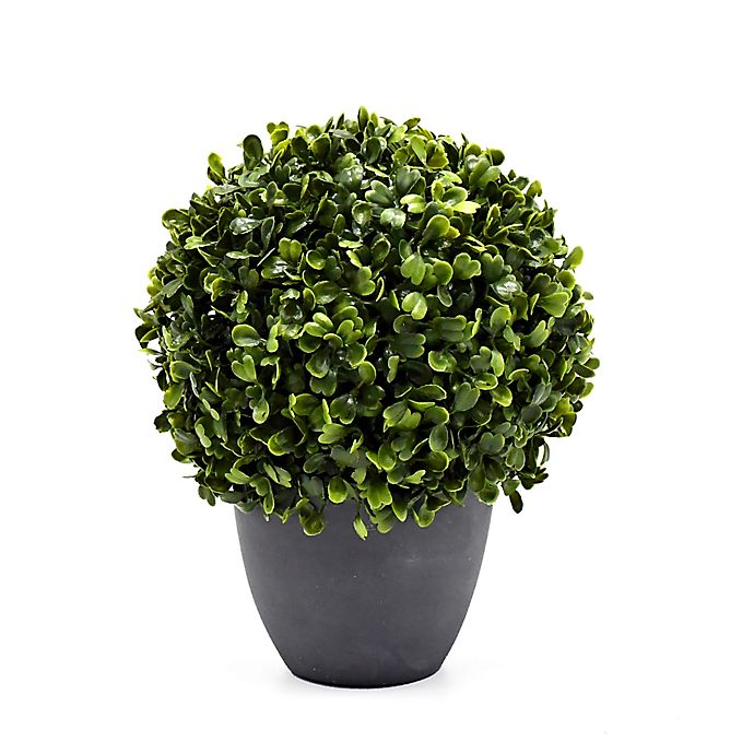 Alternate image 1 for Bee & Willow™ Home 8.6-Inch Boxwood Artificial Topiary in Cement Pot
