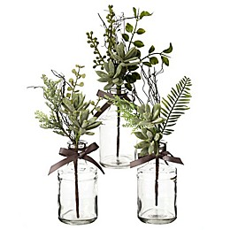 Bee & Willow™ Home Assorted Succulent and Ferns