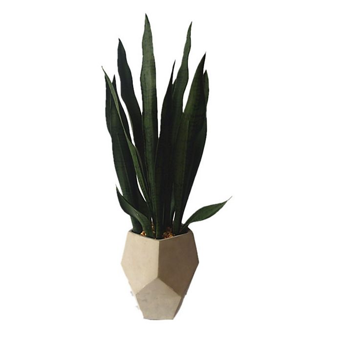 Alternate image 1 for 27-Inch Faux Sanseveria with Geo Cement Pot
