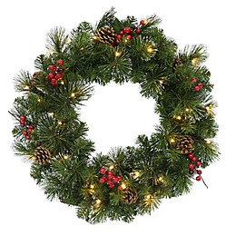 Winter Wonderland 24-Inch Traditional Frosted Berry Artificial Wreath in Green/Red