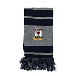 Harry Potter™ Hogwarts Patch Striped Knit Scarf