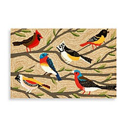 Trans-Ocean Frontporch Birds Accent Rug