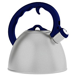 Remedy® Metro 1.6-Quart Brushed Stainless Steel Tea Kettles