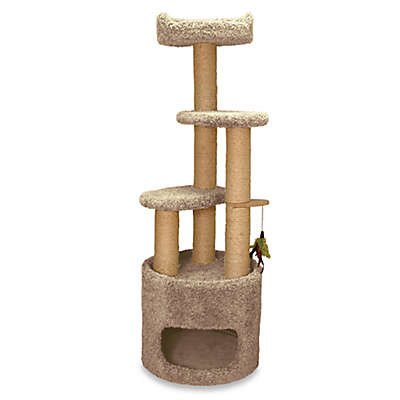 Family Cat Condo Tree with Sky Lookout