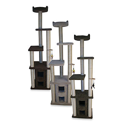 Family Cat 2-Story Condo with Sky Lookout