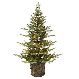 Bee & Willow™ Home 5-Foot Pre-Lit Tree with Clear Lights