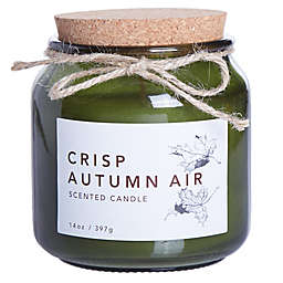 Crisp Autumn Air 14 oz. Large Jar Candle