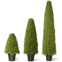 National Tree Boxwood Tree with Green Pot