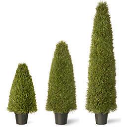 National Tree Upright Juniper Tree with Green Pot
