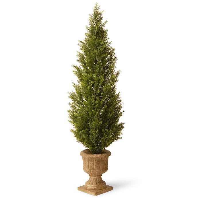Alternate image 1 for National Tree 60-Inch Arborvitae Plant