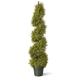 National Tree 48-Inch Juniper Slim Spiral Plant with Green Pot