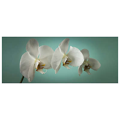 """Teal Orchid"" Canvas Art"