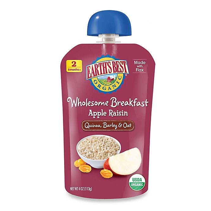 Alternate image 1 for Earth's Best® Organic 4 oz. Wholesome Breakfast Apple Raisin