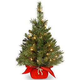 National Tree Company 2-Foot Majestic Fir Pre-Lit Christmas Tree with Clear Lights and Red Base