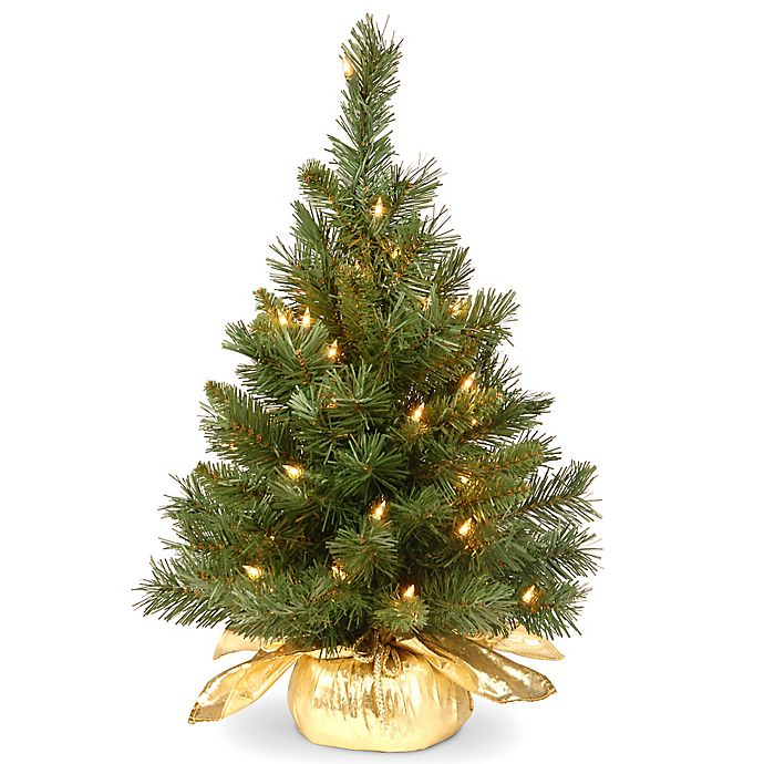 Alternate image 1 for National Tree Company 2-Foot Majestic Fir Pre-Lit Christmas Tree with Clear Lights and Gold Base