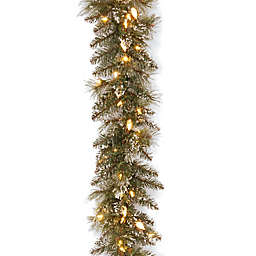 National Tree Company 9-Foot Pre-Lit Glittery Bristle Pine Garland with Soft White LED Lights