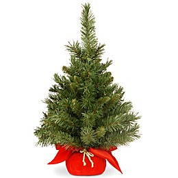 National Tree Company 2-Foot Majestic Fir Christmas Tree with Red Base