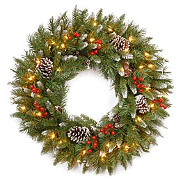 National Tree 2-Foot Frosted Berry Pre-Lit Wreath with Clear Lights