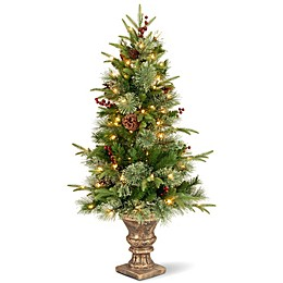 "National Tree Company 4-Foot ""Feel Real"" Colonial Pre-Lit Entrance Christmas Tree with Clear Lights"