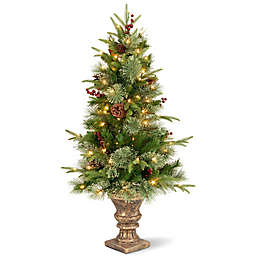 National Tree Company 4-Foot \