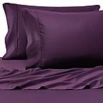 Pure Beech® 100% Modal  Sateen Standard Pillowcase Pair in Plum