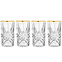 Godinger Gold 10 oz. Highball Glasses (Set of 4)