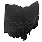 Top Shelf Living Ohio Slate Cheese Board