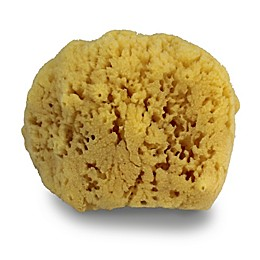 Swissco Natural Sea Sponge