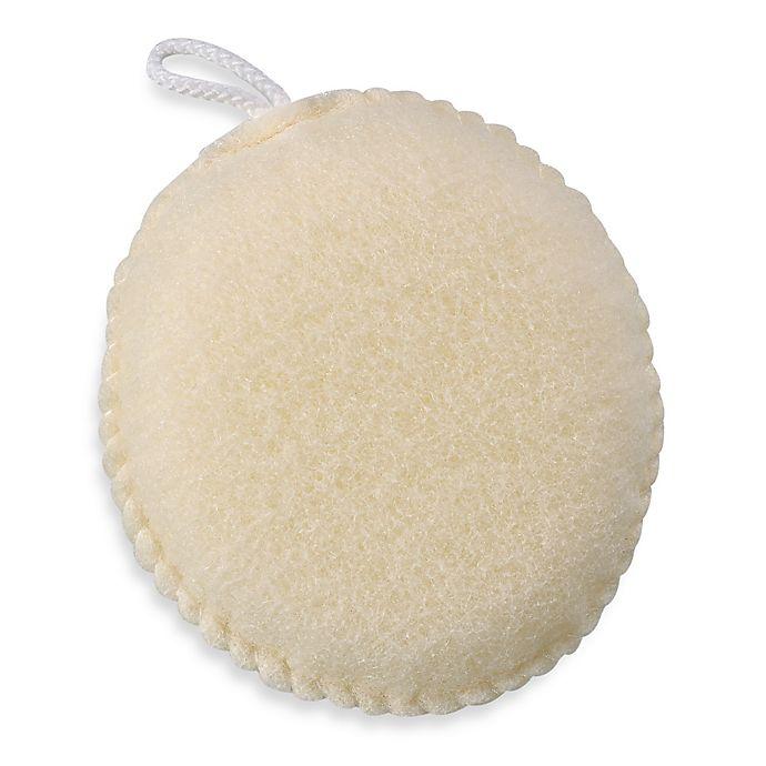 Alternate image 1 for Exfoliating Body Sponge