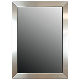 Hitchcock-Butterfield Decorative Wall Mirror in Stainless Silver