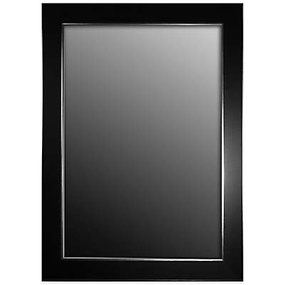 Hitchcock-Butterfield Decorative Wall Mirror in Black Forest with Silver Edged Trim
