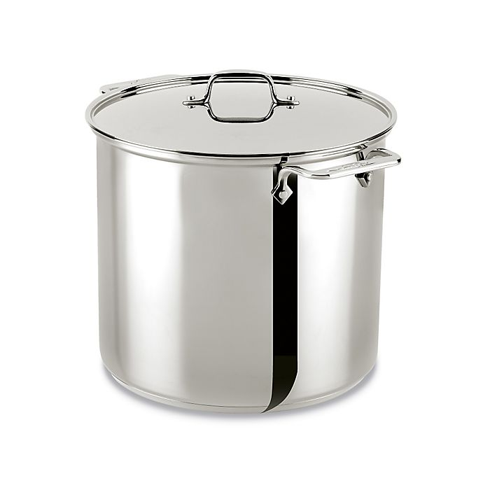 Alternate image 1 for All-Clad Stainless Steel 16 qt. Covered Stock Pot