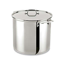 All-Clad Stainless Steel 16 qt. Covered Stock Pot