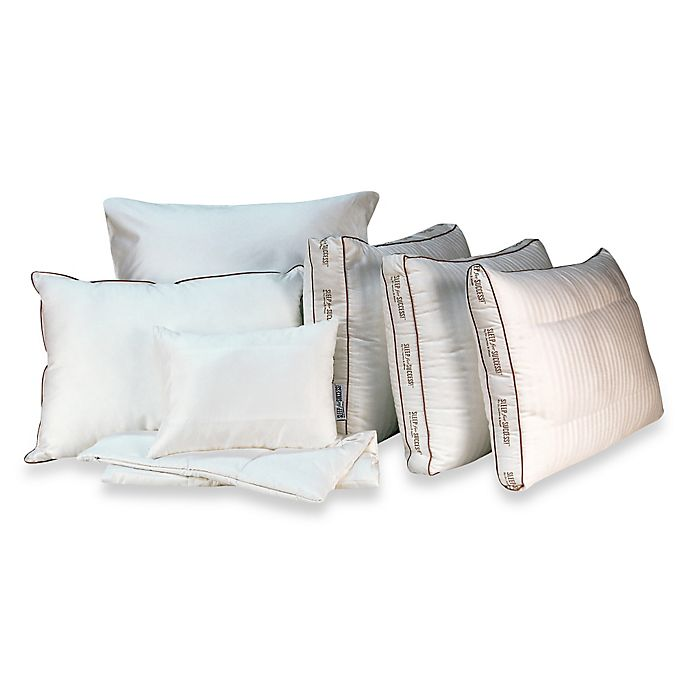 Alternate image 1 for Sleep for Success! By Dr. Maas™ Pillow Collection