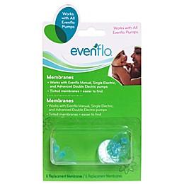 Evenflo® 6-Count Pump Replacement Membranes