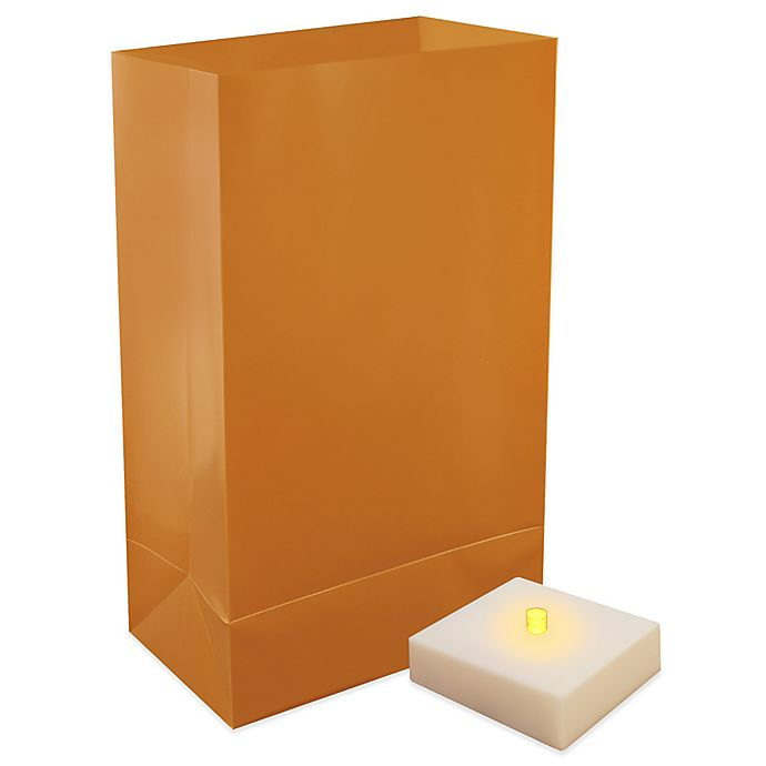 Alternate image 1 for Battery Operated LumaLite Luminaria Kit with Tan Bags with Timer (6 Count)