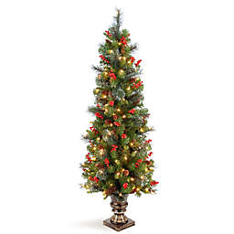 National Tree Company Crestwood Spruce 5-Foot Pre-Lit Entrance Tree with Clear Lights