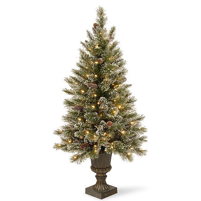 Alternate image 1 for National Tree Glittery Bristle Pine Pre-Lit Entrance Christmas Tree