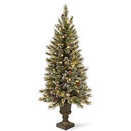 National Tree Company 4-Foot Pre-Lit Glittery Bristle Entrance Tree w/ Soft White LED Lights
