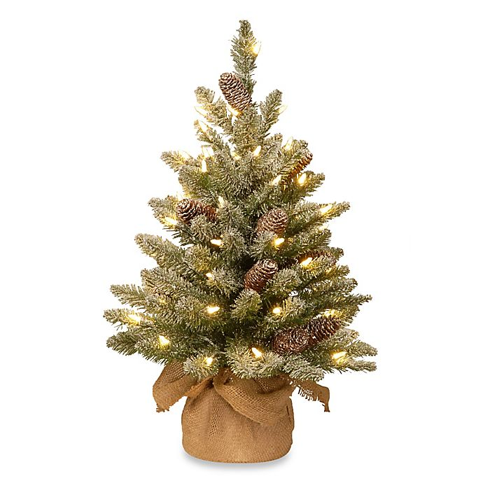 Alternate image 1 for National Tree 2-Foot Snowy Concolor Fir Tree Pre-Lit with 50 Lights