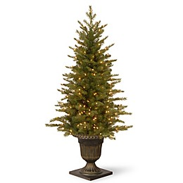 National Tree Feel-Real® 4-Foot Nordic Spruce Entrance Tree with Clear Lights